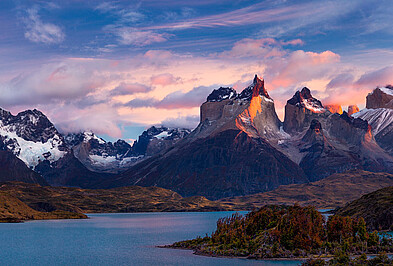 Glockenblume Torres del Paine Nationalpark.